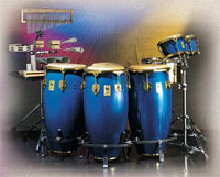Limited Edition Congas